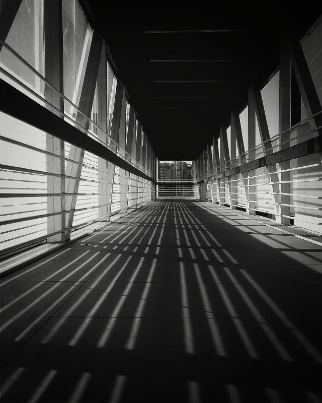 Sobre sombra e linhas se vive a vida. #blackandwhite canont3i #pretoebranco #fotografia#inspiração#photographer#direçãoesentido
