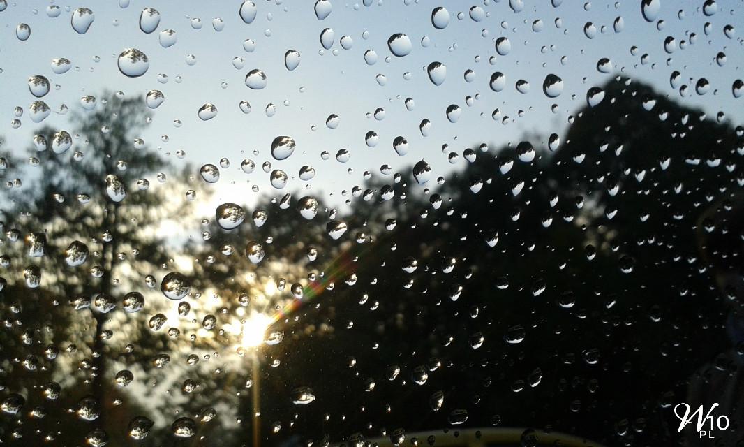 #rain #sun #wppnaturallight