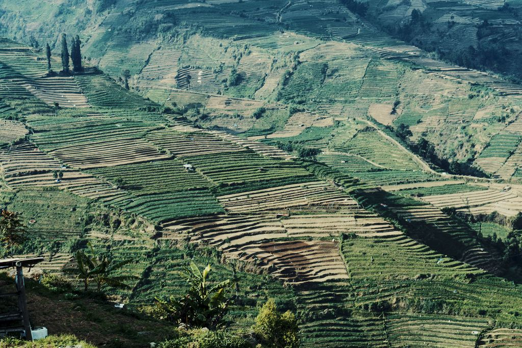 Dieng plateu   #photography #travel #nature