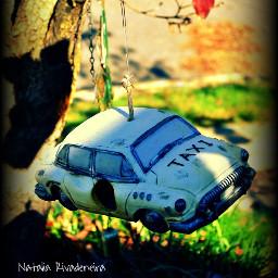tree hangingout taxi vignette colorful