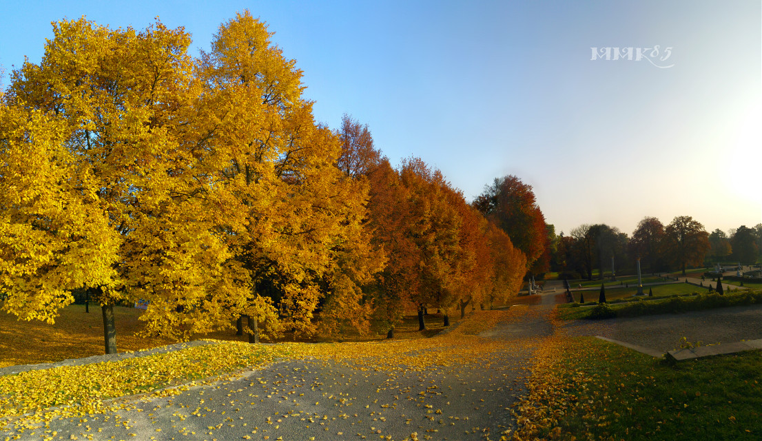#colorplay at the park of castle Sanssouci in Potsdam #colorplayt #lgg4 #colorful #nature #trees #autumn #fall #saturated #yellow #red #orange #blue #park #potsdam