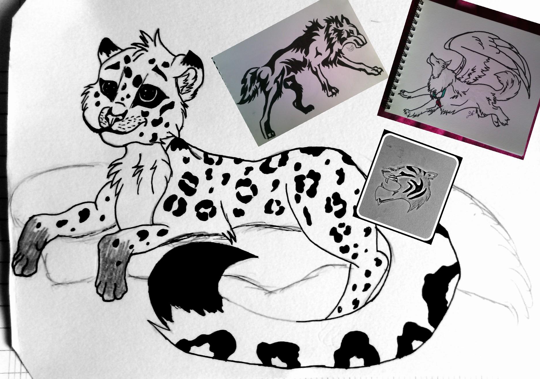 Dessin Leopard Noiretblanc Image By Cloclo262003