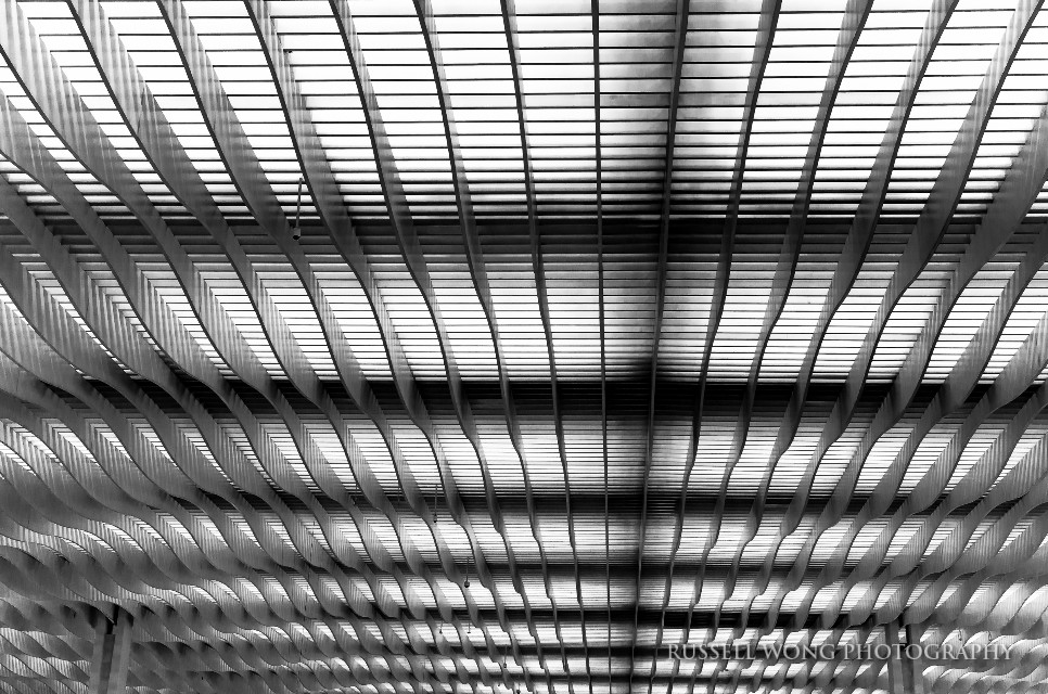 Blades #blackandwhite #photography #pattern #infinity #lines #perspective #abstract