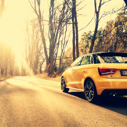 cars audi wood freetoedit