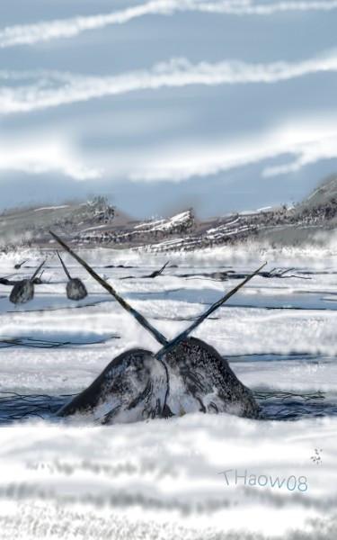 #wdpnarwhal #sea #animal  #artic  #drawing  #art