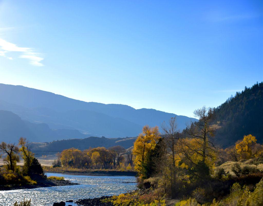 Up the Lazy River #naturefreetoedit#art #landscape#River