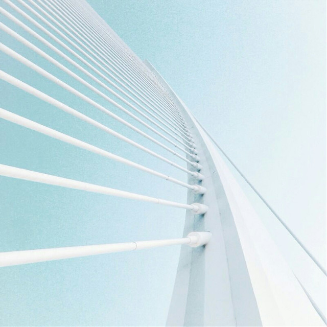 #symmetry #white