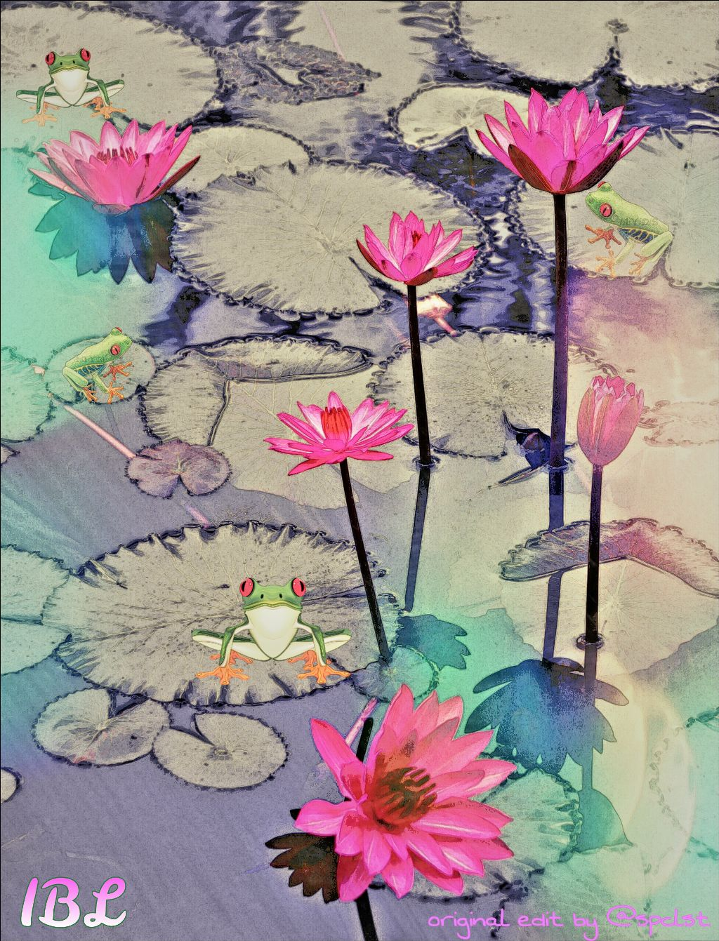 Featured! Lol.😄 Thanks @pa  And thanks for the lovely pic to edit @spclst  #edits  #friends  #picsart  #people  #clipart  #colorful  #waterlily  #frogs  #flowers   @spclst I love waterlilys so a little edit to your original. 😄😄