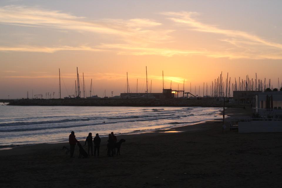 #canon #reflex #nofilter #sunset