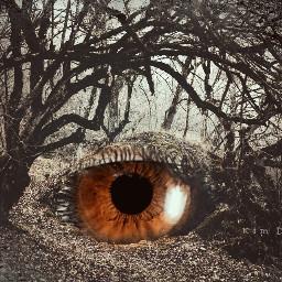 undefined shapecrop doubleexposure dark surreal