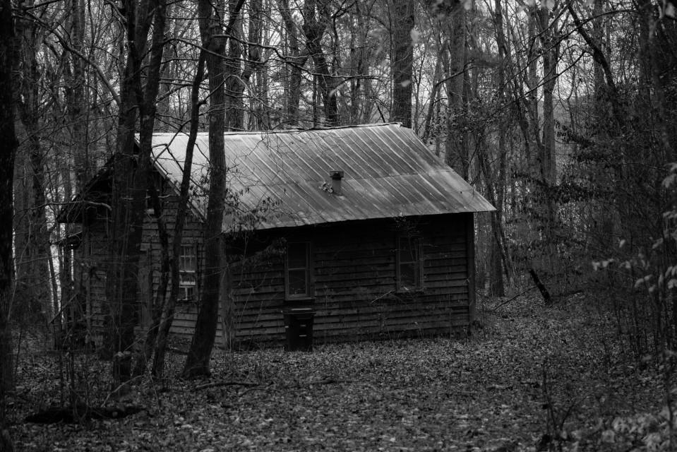 #blackandwhite #photography #winter #grey #cabin #trees #dark #lonely
