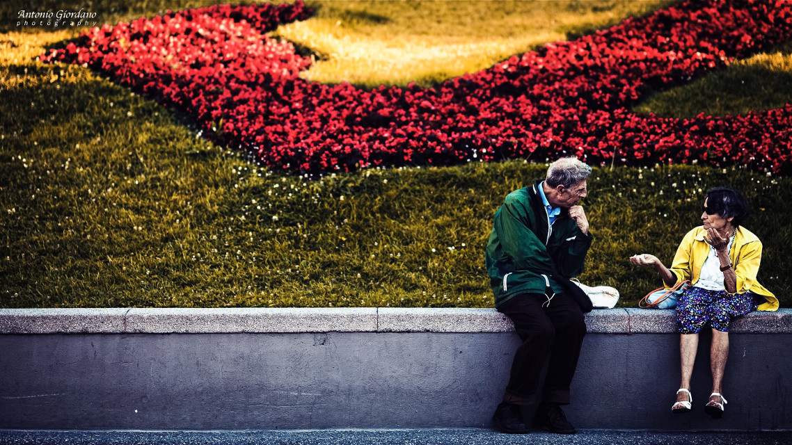 #streetphotography #italy #people #color #photography #nature #genova