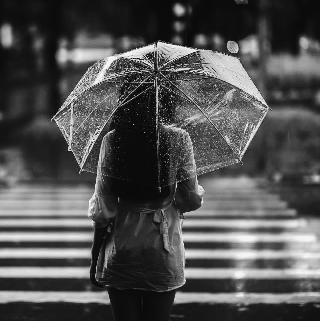 Under the rain.  #blackandwhite #bokeh #emotions #love #nature #quotesandsayings