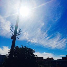 art sky tree iraq baghdad