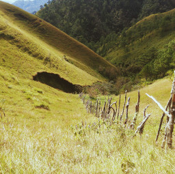 phonephotography landscape green travel hiking