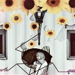 flower blackandwhite holga pencilart oldphoto