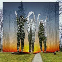doubleexposure negativeblend nature trees colorful