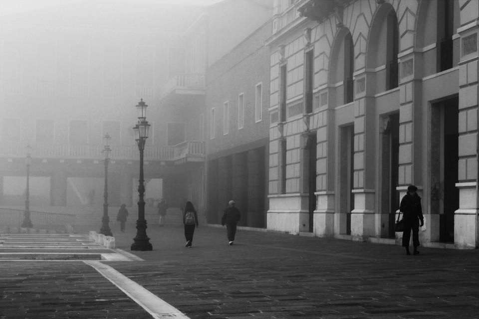 #blackandwhite  #fog #streetphotography #silhouette #architecture #travel #venice