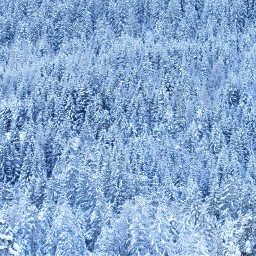 snow spettacolare