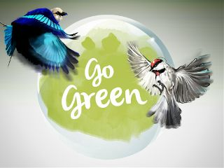 nature illustration earthday birds gogreen