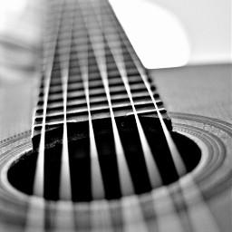 dynamictension blackandwhite music photography guitarstrings