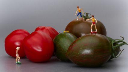 tomato skateboard funktioniert food